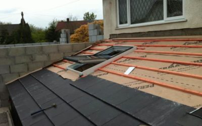 Roof Repairs Dublin 20 Servicing Chapelizod, Redcowfarm and Palmerstown